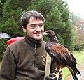 Falconer with hawk, Ashford Castle Falconry, Ireland.jpg
