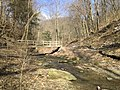 Fall Run Park in Shaler Township, late winter - 34.jpeg