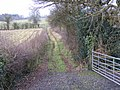 Farm Track from Lower Laches Farm - geograph.org.uk - 1079097.jpg