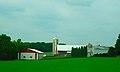 Farm with Two Silos - panoramio (51).jpg