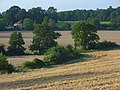 Farmland, Mortimer - geograph.org.uk - 956958.jpg