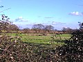 Farmland and Pond - geograph.org.uk - 330261.jpg