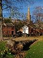 Felled tree, St Bartholomew's Lower Cemetery, Exeter - geograph.org.uk - 1059215.jpg