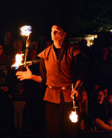Feuershow – Hörnerfest 2014 07.jpg