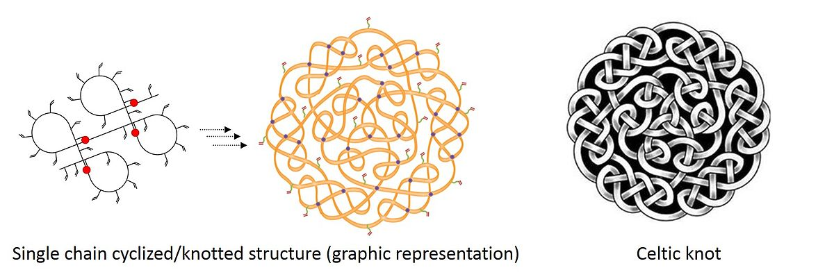 Knotted Polymers Wikipedia