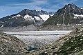 Fieschertal VS - Aletsch Glacier (27654292033).jpg