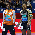 Finale de la coupe de ligue féminine de handball 2013 046.jpg