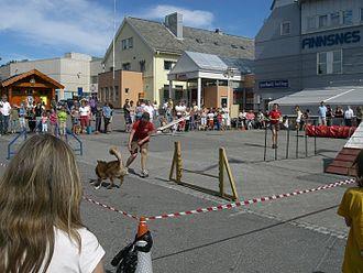 Finnsnes - The town square in Finnsnes