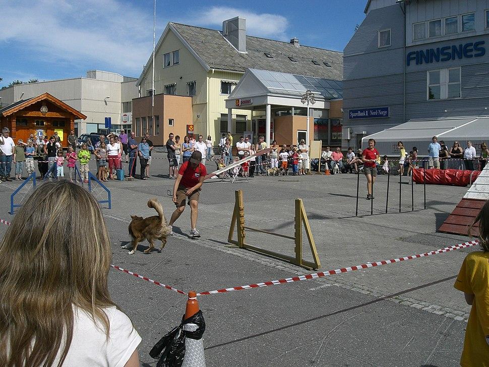 Finnsnes(square)
