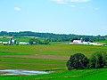 Flooded Farmland - panoramio (1).jpg