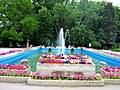 Flowers in Herastrau Park.jpg