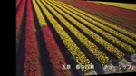 File:Flowers of Spring in Gosen City, Japan - Aerial Video.webm