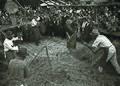 Folklorna prireditev v Polenšaku 1964.jpg