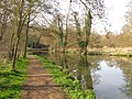 Footpath along the River Wey - geograph.org.uk - 1221237.jpg