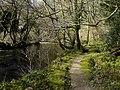 Footpath alongside the Afon Nyfer (2) - geograph.org.uk - 1761453.jpg