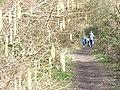 Footpath by Bents Brook - geograph.org.uk - 1193691.jpg