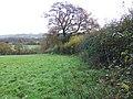 Footpath near Charnage - geograph.org.uk - 1584670.jpg