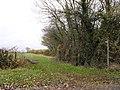 Footpath to Homeleaze Farm - geograph.org.uk - 1613883.jpg