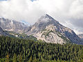 Forest and mountain 2.jpg