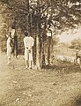 Four African American men lynched in photo taken on August 1, 1908 -Lynching, Russellville, Kentucky- MET DP283445 (cropped).jpg