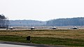 Four U.S. Air Force F-16 Fighting Falcon aircraft assigned to the 555th Fighter Squadron prepare to take off from Lask Air Base, Poland, for a training mission March 18, 2014 140318-F-BH566-482.jpg