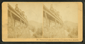 Frankenstein Trestle and Cliff, P.& O.R.R., Crawford Notch, from Robert N. Dennis collection of stereoscopic views 3.png