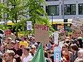 FridaysForFuture protest Berlin Invalidenpark 28-06-2019 02.jpg