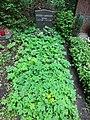 Friedhof heerstraße berlin 2018 05 012 - 31.jpg
