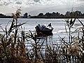 Furiani pêcheurs à l'étang de Biguglia.jpg