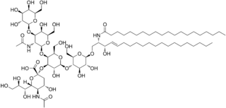 GM1 chemical compound
