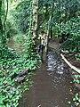 GT Flash flood at Mud Bench.jpg