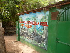 """Kachikally Crocodile Pool"" und Museum"