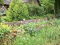 Garden in Lanark.JPG