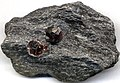 Garnet schist (Late Cretaceous, 89-90 Ma; Garnet Ledge, about 12 km north of Wrangell, southeastern Alaska, USA) 1 (16921541592).jpg