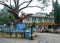 Garuda statue at Guruvayur Sri Krishna Temple.jpg