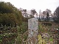 Gatepost marking overgrown footpath - geograph.org.uk - 588962.jpg