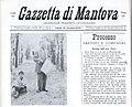 Gazzetta di Mantova.jpg