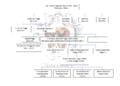 Genealogia Banchieri Poggi.png