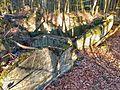 Gesprengter Bunker im Beckinger Wald 19.jpg