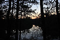 Gfp-wisconsin-mirror-lake-state-park-sunset-behind-trees.jpg