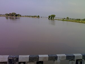 Ghaggar river in September, near Anoopgarh, Rajasthan