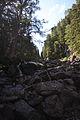 Giglachbach-landauersee 14908 2011-08-31.JPG