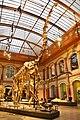 Giraffatitan brancai, Berlin Natural History Museum (6) (25311781497).jpg