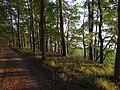 Gmina Piecki, Poland - panoramio (196).jpg