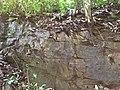 Gneiss outcrop in Eseka.jpg
