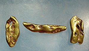 Gold in California - Three gold nuggets from Tuolumne County, California, similar to what the early miners would have found.