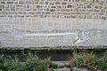 Graffiti Wien river - fish bones.jpg