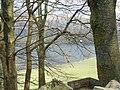 Grasmere through the trees - geograph.org.uk - 766474.jpg