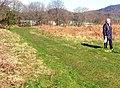 Grassy track - geograph.org.uk - 1420865.jpg