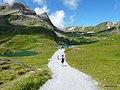 Grindelwald, Switzerland - panoramio - Tedd Santana (7).jpg